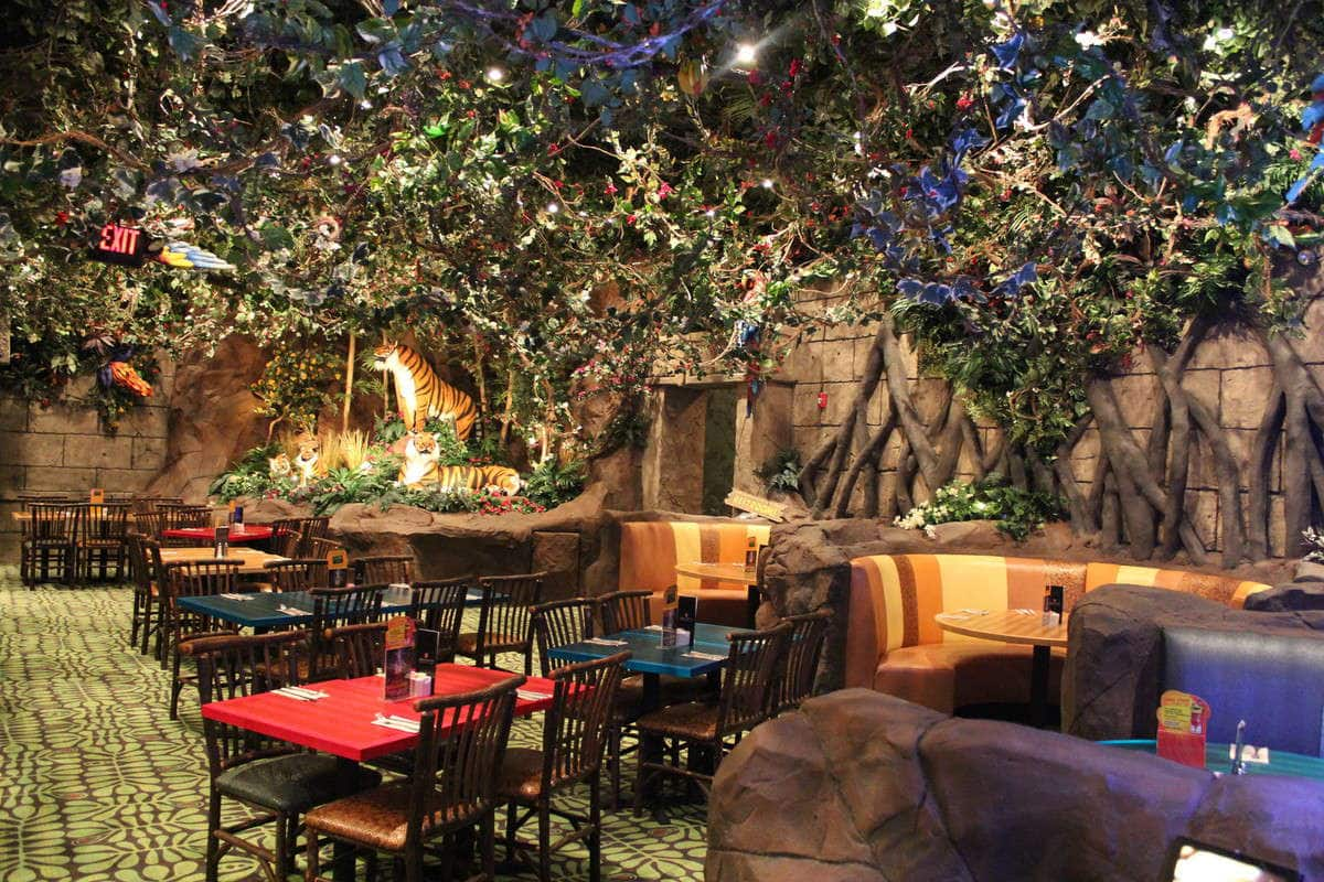 Places Like Rainforest Cafe